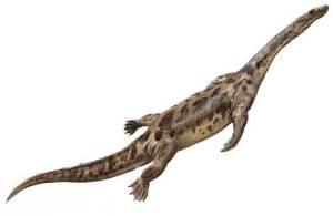 sauropterigios plesiosaurios